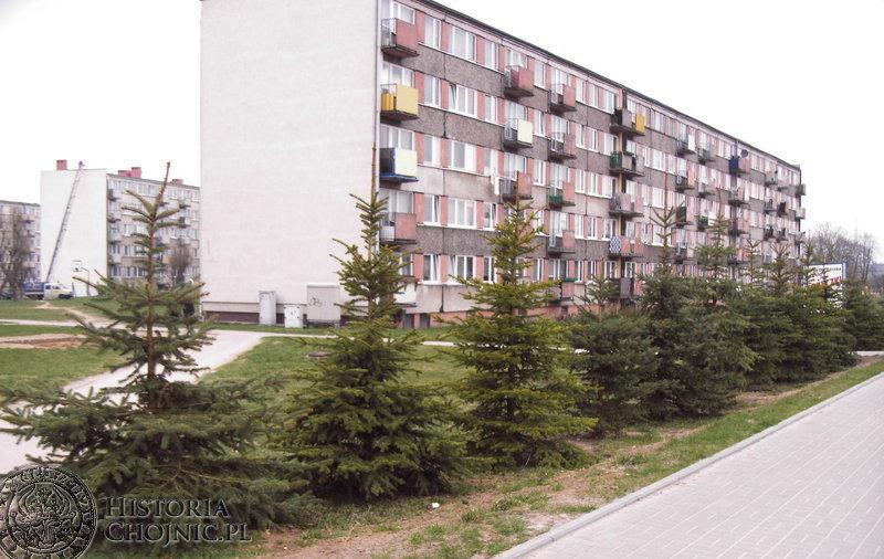 Na ulicy Kościerskiej w Chojnicach zrobiło się zielono – wzdłuż chodników posadzone zostały piękne drzewka. Ich zakup sfinansował Urząd Miasta.