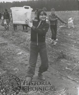 Na wykopkach - 1982.